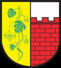 Herb Witnicy